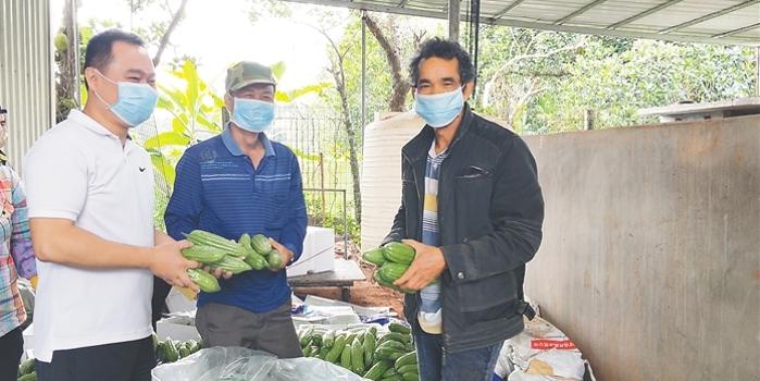 美高梅游戏遵谭镇爱心企业家收购脱贫户瓜菜捐赠湖北荆州