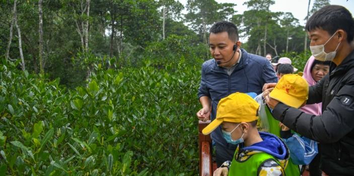 海口特教学子东寨港感受湿地自然魅力
