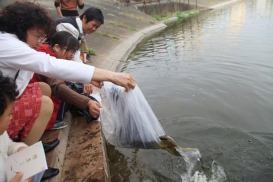 海口50名志愿者自掏腰包买野生动物放生(图)