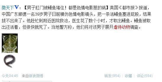 重口味!广东39岁男子模仿鳝始鳝终 英媒称虐待动物