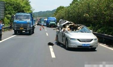 浙江大溪高速隧道口发生一起惨裂车祸,现场导致1死1伤.