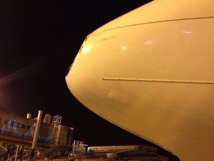 据了解,一只飞鸟撞上了飞机机头挡风玻璃,幸好损伤不大.