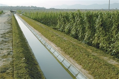 农田灌溉水渠.