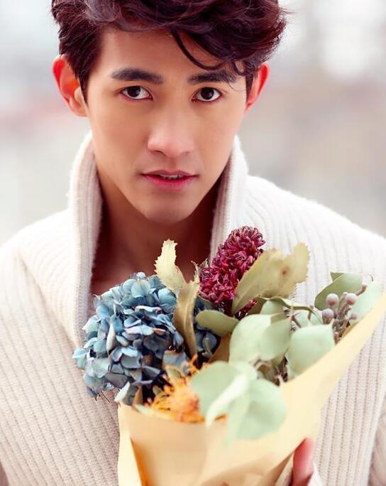 其实,李子峰的真实职业是模特、演员,2005年,获得MENS UNO 2005全球华人超级男模大赛冠军。2011年参加米兰秋冬男装周,正式进军国际T台。2010年,参演青春系列电影之《L.I》;同年客串参演由徐静蕾导演的电影《杜拉拉升职记》。