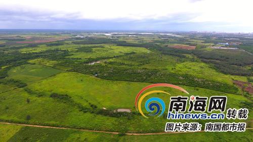航拍东方大田坡鹿自然保护区