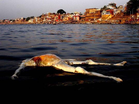 探秘印度圣河:与浮尸共沐浴
