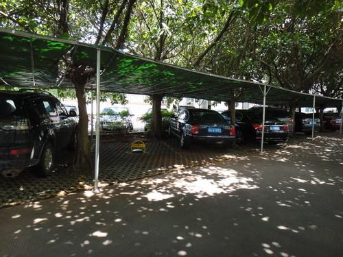 """""""现在停车场有简易棚和树荫的停车位,被物业公司以500元/月的价格出租"""