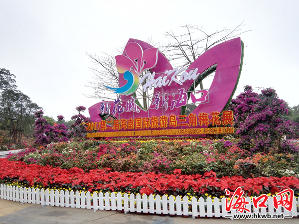 为了更好地呈现本届花展的亮点,海口滨海公园除了在展区主要出入口及