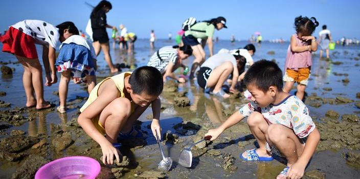 (社会)(2)海南:拾贝抓蟹体验赶海