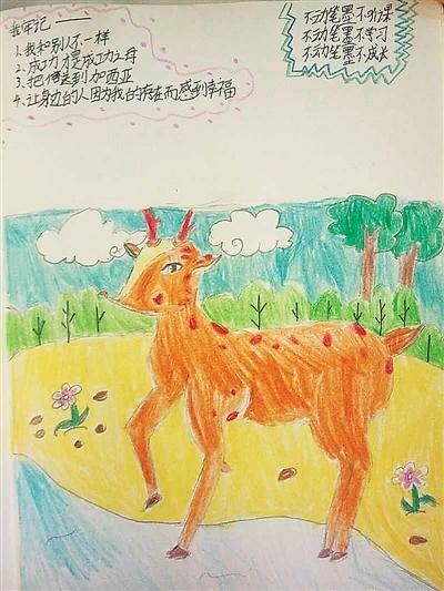 彩铅简笔画小鹿