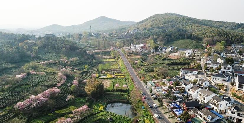 (春季美丽生态)(1)美丽乡村游 家门口增收
