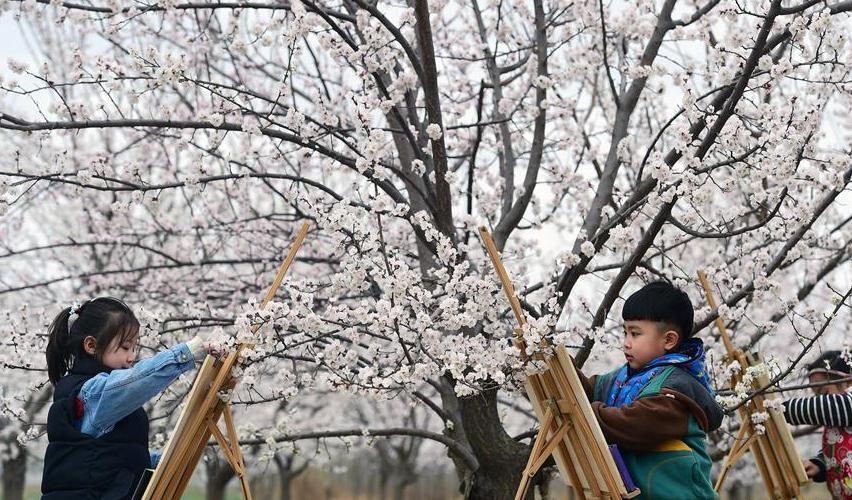 #(社会)(2)亲近自然 感受春天