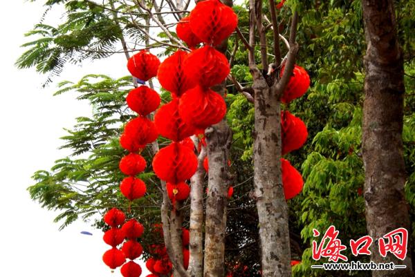 红旗飘扬灯笼高挂 海口大街小巷喜迎建省30周年(组图)