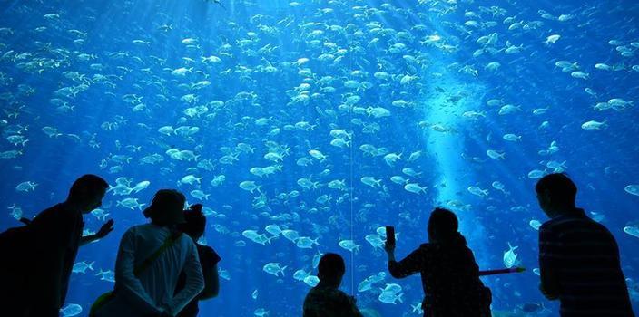 (XHDW)(8)海南打造国际旅游消费中心
