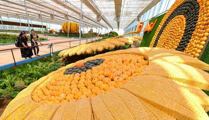 (经济)(2)产业融合发展助力乡村振兴