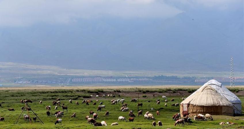 #(环境)(1)新疆巴里坤草原美如画