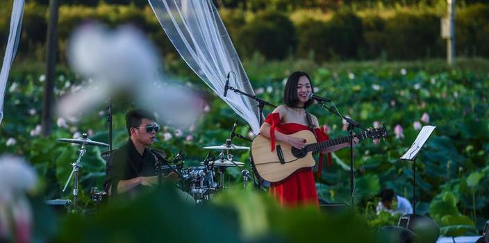 """(文化)(1)美丽山村举办夏季""""荷塘月色""""音乐会"""