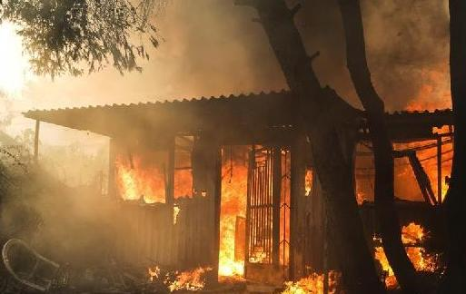 (国际)(1)希腊雅典附近发生森林火灾 上千人撤离