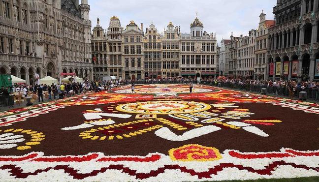 (国际)(8)布鲁塞尔鲜花地毯