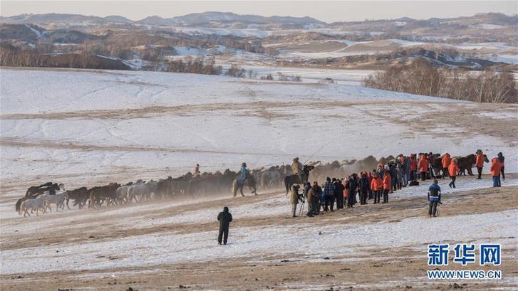 #(社会)(5)冬季跑马引游客