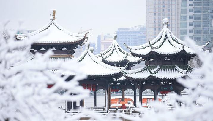 #(环境)(10)瑞雪贺新春