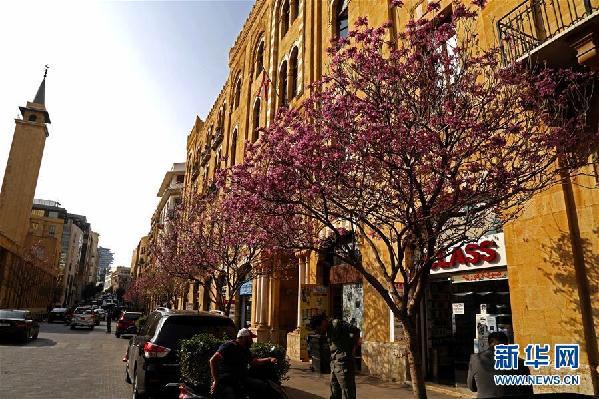 (国际)(1)春到贝鲁特