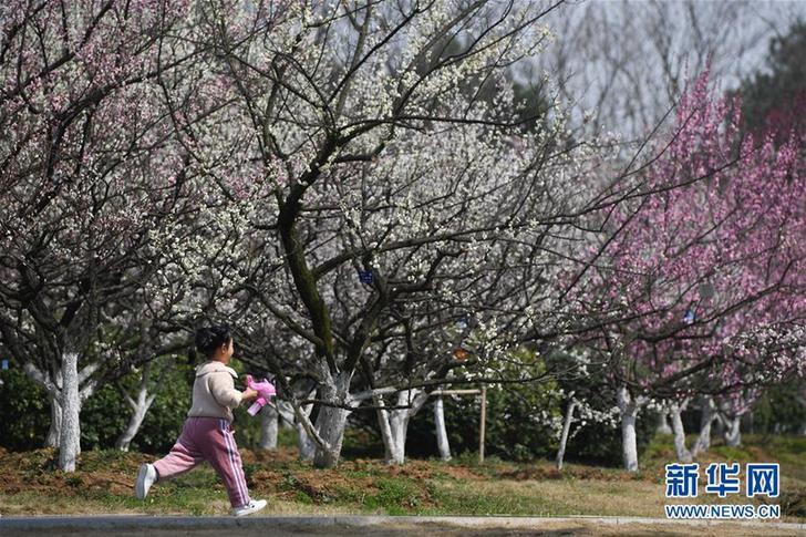 (新华视界)(1)春暖游园乐
