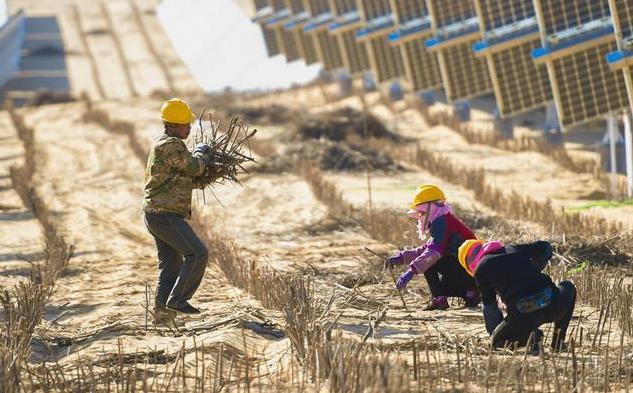 (环境)(1)库布其沙漠腹地治沙忙
