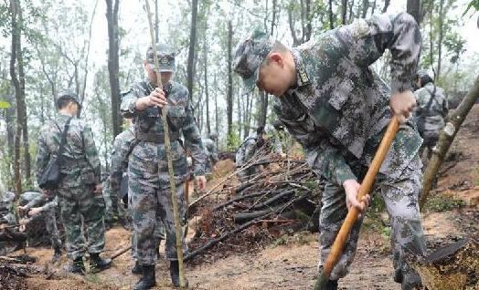 (图文互动)(1)解放军驻澳门部队参加绿化植树活动