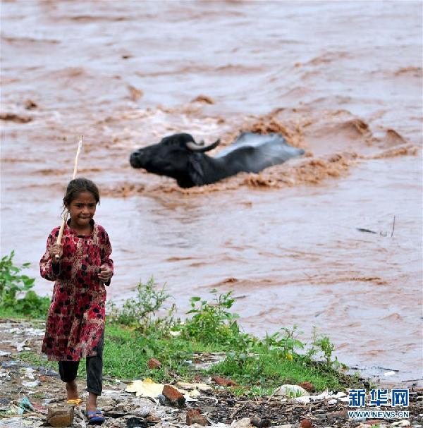 (国际)(1)洪水泛滥达维河