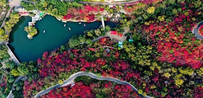 (美丽中国)(3)红叶谷秋色