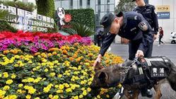 (第二屆進博會)(1)警犬助力進博會保障工作
