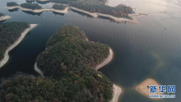 (环境)(1)太平湖晨景