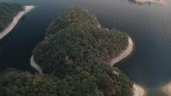 (環境)(1)太平湖晨景
