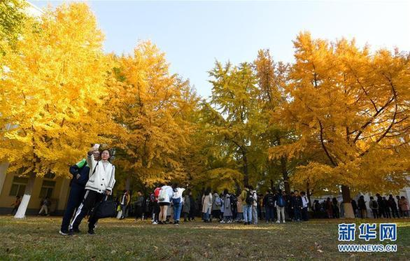 (美丽中国)(3)北京:校园秋色如画