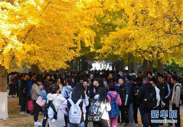 (美丽中国)(4)北京:校园秋色如画
