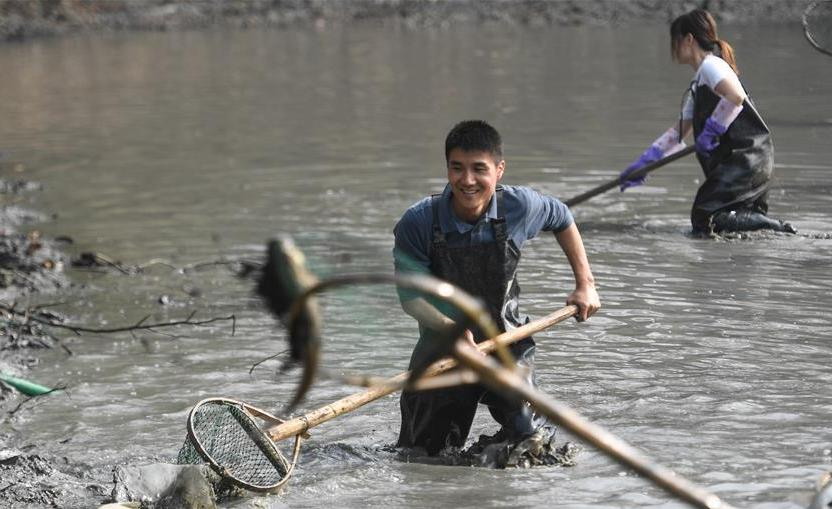 """(社会)(1)杭州:游客体验""""干塘""""捕鱼"""
