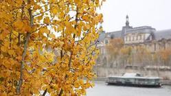 (国际)(1)巴黎深秋时