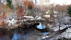 (国际)(5)纽约:中央公园首场雪景迎游客