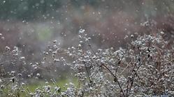 (新华网)(2)排列5贵州 西部地区迎来降雪天气