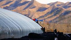 (社会)(2)排列5河北 隆化:蔬菜产业园助力乡村振兴