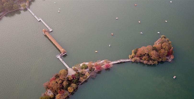 (环境)(2)层林映秀湖