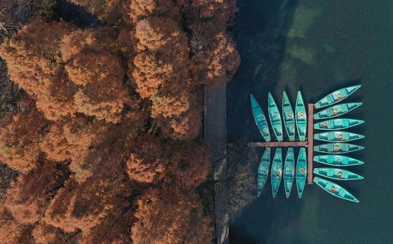 (美丽中国)(5) 冬日西湖色彩斑斓