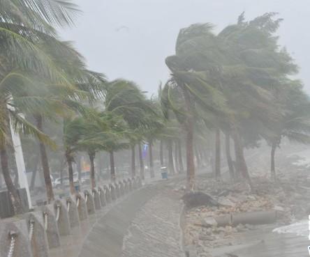台风室外3d手绘立体画