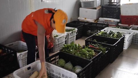 海口:春节期间预计储备蔬菜3000吨 让市民放心购菜