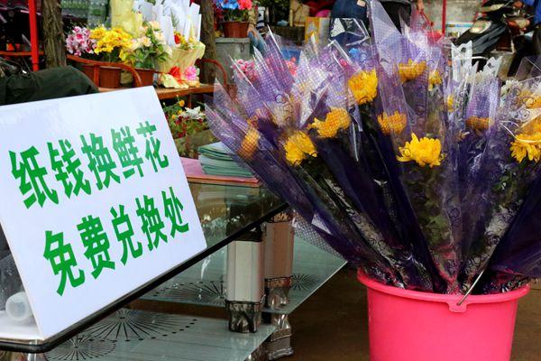 海口祭扫新趋势:一束鲜花祭故人 绿色清明新风尚