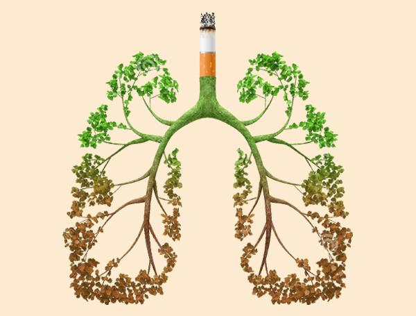 公益广告:为了您和家人的健康 请不要吸烟