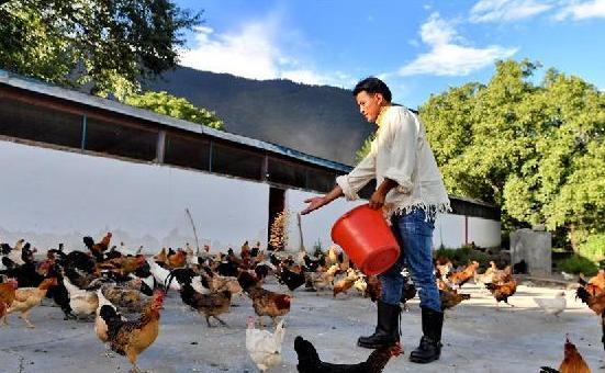 西藏:色果拉村奔小康