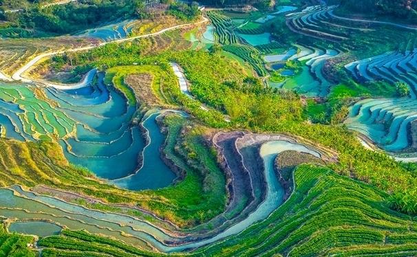 五指山加快建成热带雨林养生度假旅游城市