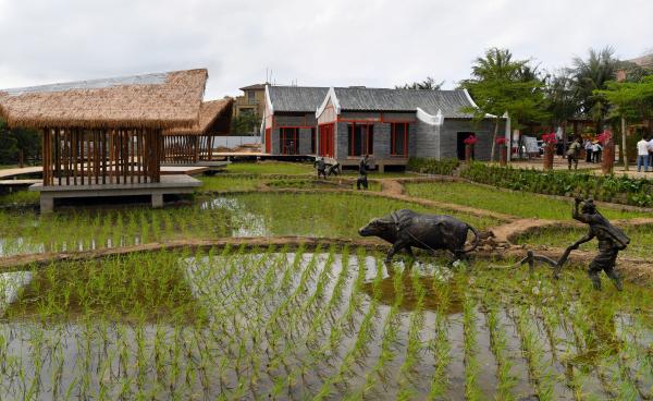 闯出绿色发展振兴之路 海口大力创建文明生态村